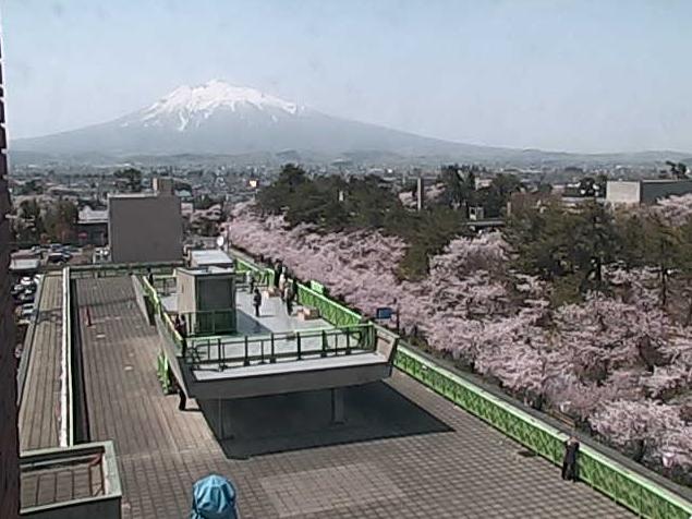 弘前市役所から追手門(交差点・入口・広場)・岩木山・桜