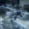 サンシャイン水族館ペンギンビーチライブカメラ(東京都豊島区東池袋)