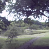六義園心泉亭ライブカメラ(東京都文京区本駒込)