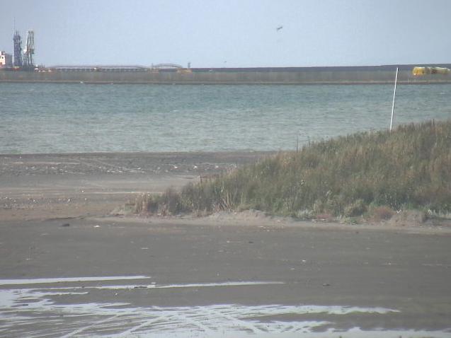 浜厚真駅付近海岸から浜厚真ビーチ