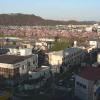 NTT大河原町一目千本桜ライブカメラ(宮城県大河原町)