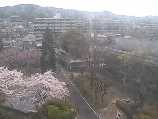 京都大学宇治キャンパスE棟から高峰山・おうばくプラザ・桜