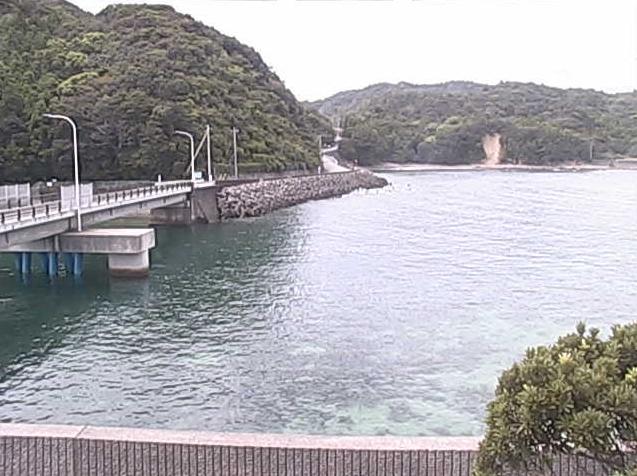 海洋自然博物館マリンジャムから竹ヶ島付近が見えるライブカメラ。