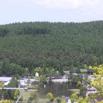 黄金アカシアの丘ライブカメラ(長野県立科町芦田八ケ野)