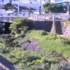 比謝川国道330号付近ライブカメラ(沖縄県沖縄市)