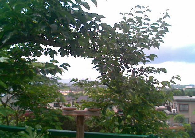 仙台市北北西方向