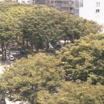 せんだいメディアテークライブカメラ(宮城県仙台市青葉区)
