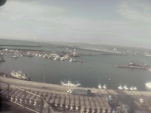天地閣から小名浜港・太平洋