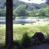 那須白河フォレストスプリングスセカンドボンドライブカメラ(福島県西郷村金子石)