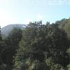 山形県立自然博物園ライブカメラ(山形県西川町志津)