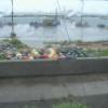 蓬田漁港ライブカメラ(青森県蓬田村郷沢浜田)
