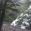 湯滝レストハウスライブカメラ(栃木県日光市湯元)