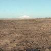サロベツ湿原センターライブカメラ(北海道豊富町上サロベツ)