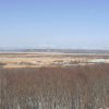 細岡展望台釧路湿原ライブカメラ(北海道釧路町達古武)