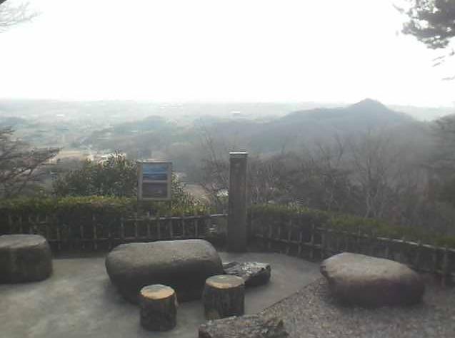 唐沢山神社から佐野市内