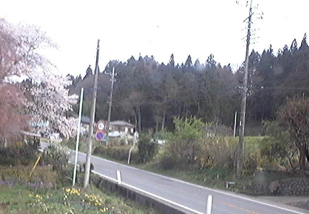 権田自動車から国道406号・桜