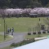 あいかわ公園ライブカメラ(神奈川県愛川町半原)