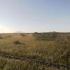 幌延ビジターセンターサロベツ湿原ライブカメラ(北海道幌延町下沼)