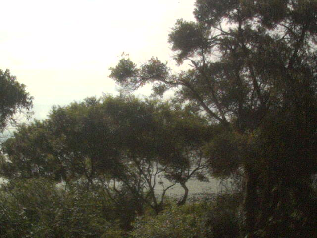 高島市新旭水鳥観察センターから琵琶湖