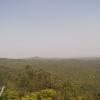 やんばる野生生物保護センターライブカメラ(沖縄県国頭村比地)