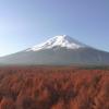 富士北麓フラックス観測サイトライブカメラ(山梨県富士吉田市上吉田)