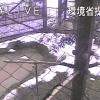 佐渡トキ保護センターライブカメラ(新潟県佐渡市新穂長畝)