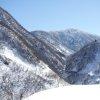 ブナオ山観察舎ライブカメラ(石川県白山市尾添)