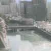 福井城跡ライブカメラ(福井県福井市大手)
