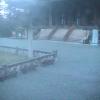 金峯山寺ライブカメラ(奈良県吉野町吉野山)