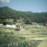 岩座神気象観測所ライブカメラ(兵庫県多可町加美区岩座神)
