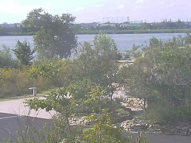 湖山池公園