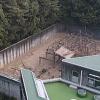 京都大学霊長類研究所ライブカメラ(愛知県犬山市官林)