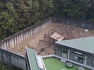 京都大学霊長類研究所