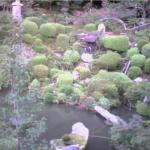 康徳寺ライブカメラ(広島県世羅町寺町)