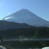 UTY西湖ライブカメラ(山梨県富士河口湖町)