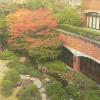 太閤園ライブカメラ(大阪府大阪市都島区)
