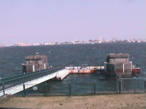 名古屋港ワイルドフラワーガーデンブルーボネットから名古屋港