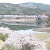 七川ダムライブカメラ(和歌山県古座川町佐田)