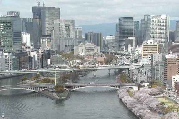 中ノ島方面・大川・南天満公園・大川沿いの桜