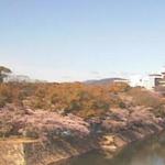 RCC広島城ライブカメラ(広島県広島市中区)