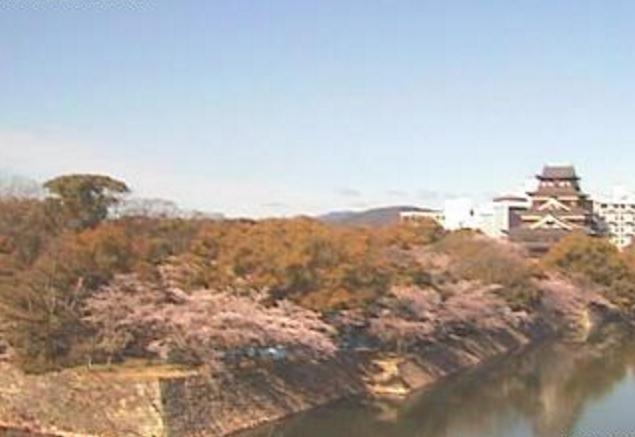 広島城・桜