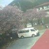 河津七滝ライブカメラ(静岡県河津町梨本)