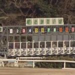 佐賀競馬ライブカメラ(佐賀県鳥栖市江島町)