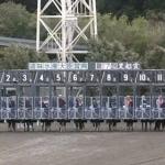 高知競馬ライブカメラ(高知県高知市長浜)