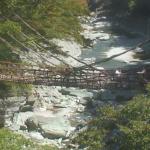 祖谷かずら橋ライブカメラ(徳島県三好市西祖谷山村)
