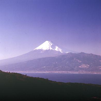 だるま山高原レストハウスから富士山