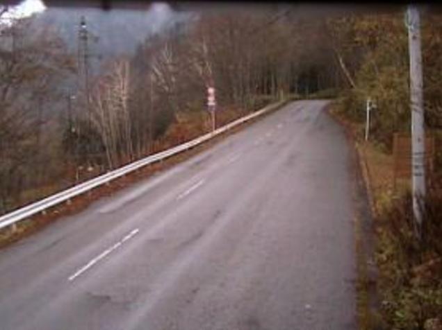 国道120号丸沼入口ライブカメラは、群馬県片品村東小川の丸沼入口に設置された国道120号(日本ロマンチック街道)が見えるライブカメラです。