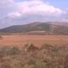 八島湿原ライブカメラ(長野県下諏訪町八島湿原)