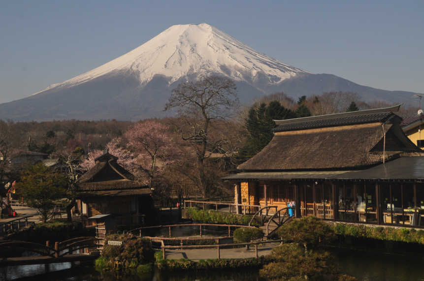 忍野八海から富士山・池本水車小屋・池本茶屋・桜