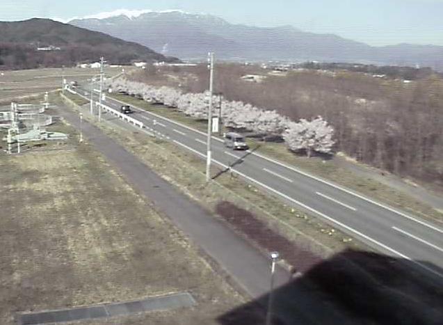 高遠浄化センターから長野県道209号・伊那市街地方面・桜